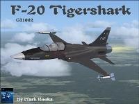 4-F-20의 추락.jpg
